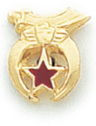 Shriners Lapel Pin Model # 362382