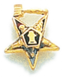 Eastern Star Lapel Pin Model # 362406