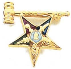 Eastern Star Lapel Pin Model # 362413