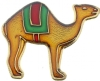 Shriners Camel Pin