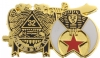 Scottish Rite & Shriners Pin
