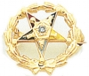 Eastern Star Lapel Pin